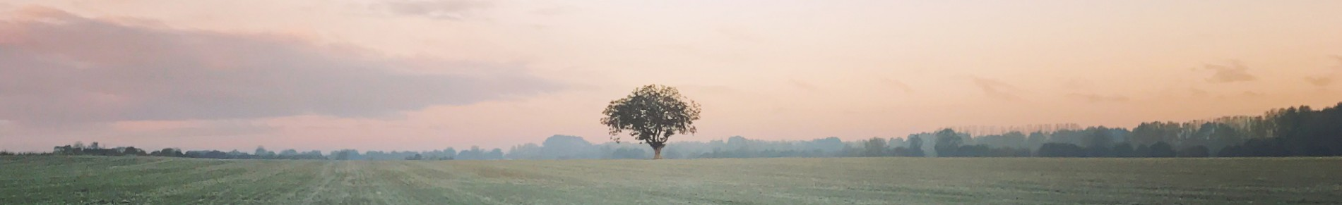 Bandeau automne