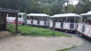 En petit train, visite de la réserve de Beaumarchais